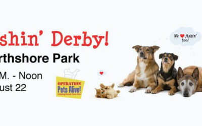Dog Days of Summer Fundraiser
