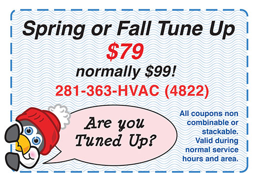Spring or Fall Tune up