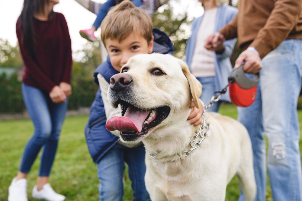 Best Dog Parks in the Woodlands